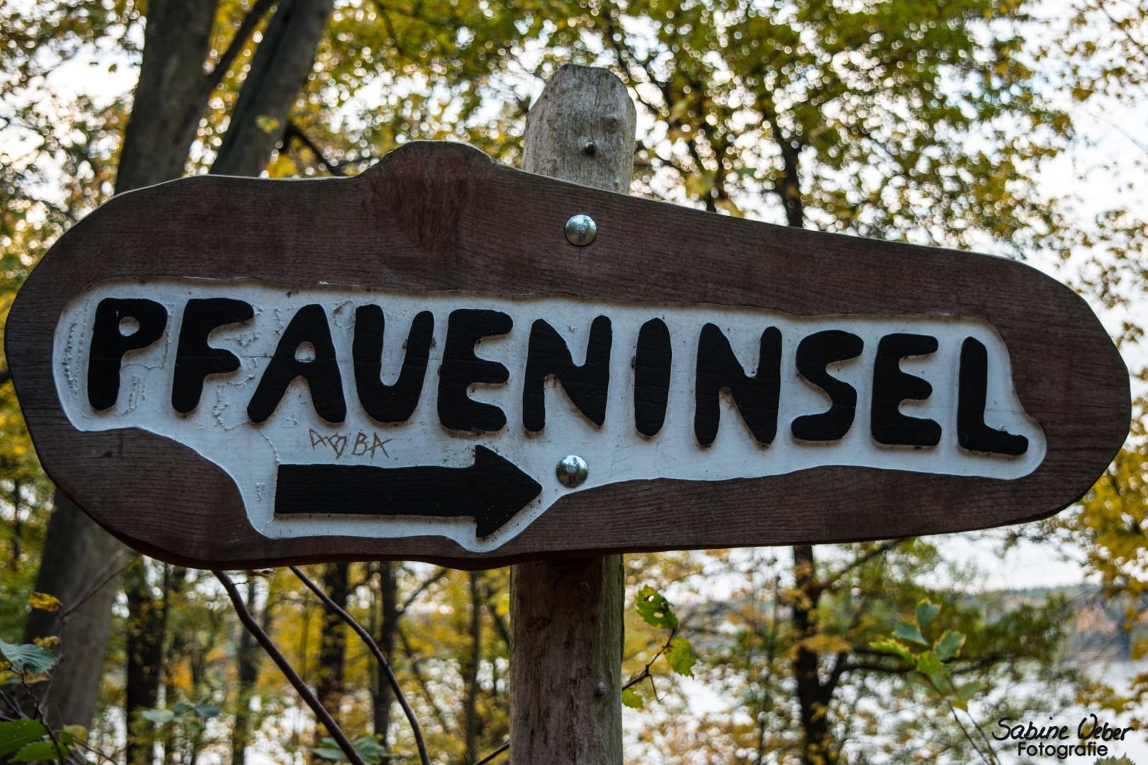 Die Pfaueninsel im Herbst 2018